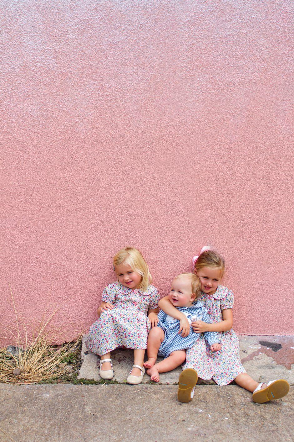Lyndsey Blush Wall JCrew Skirt - 2